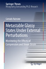 Metastable Glassy States Under External Perturbations - Monitoring the Effects of Compression and Shear-strain